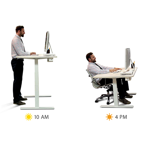The Sit/Stand Desk